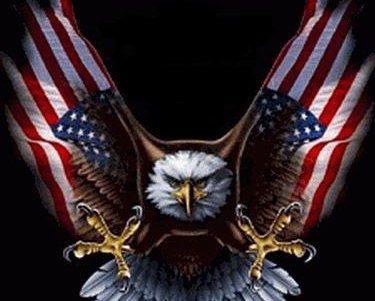 America's Patriots